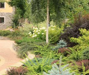 Подпорная стенка с декоративными кустарниками